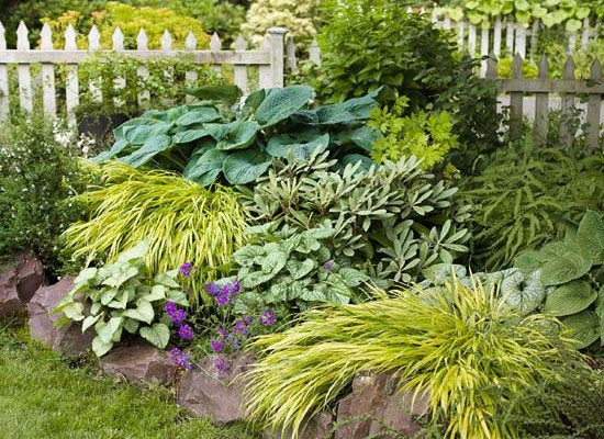 7 Unique Ways to Add Appeal to Your Garden