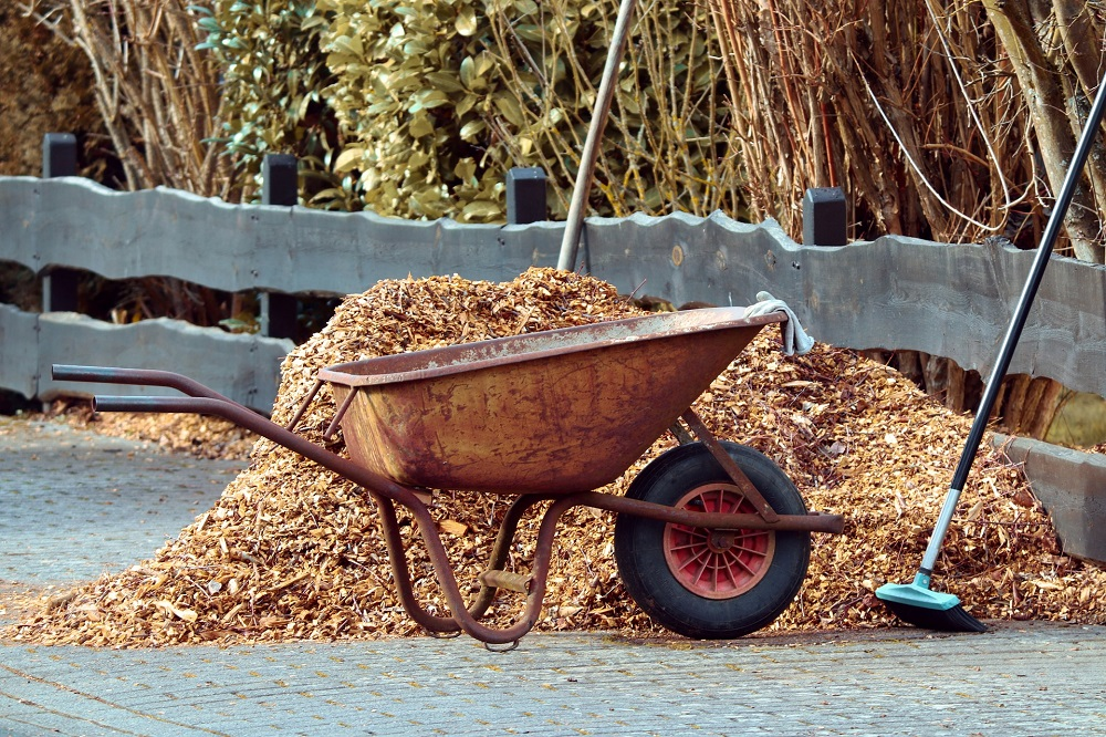 Different Types of Mulch that You Need to Know About